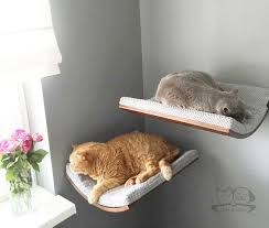 cat wall furniture oval shelfcat wall bed cat shelves cat furniture by cosyanddozy