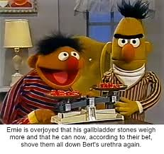 Sesame Street Memes - bert strip bladder time funny pinterest memes dankest memes