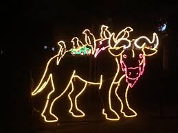 old settlers park christmas lights pictures in the park old settlers park round rock tripadvisor