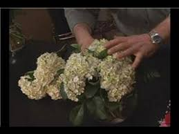 hydrangea arrangements hydrangea flower arrangements how to arrange hydrangea flowers