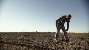 how to watch farmland