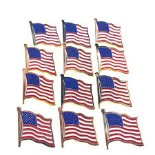 American Flag Magnet Amazon Com 12 Gold Plated American Flag Pins United States Usa