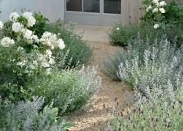 garden design ideas no grassgarden design ideas no grass garden