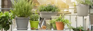 the right plant equipment for gardens and balconies u2013 emsa