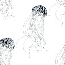 jellyfish coloring page kidspressmagazine com