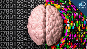 Which Part Of The Brain Consists Of Two Hemispheres Do We Have Left Or Right Brain Personalities Youtube