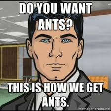 Get Meme - do you want ants know your meme