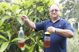 video provides backyard growers with advice on fruit fly control