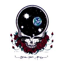 Steal Your Face Flag Grateful Dead Space Your Face Sticker Liquid Blue