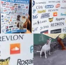 Dancing Dog Meme - no animals were harmed in the these companies test on animals meme