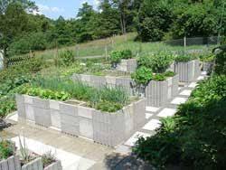 saturday march 31 2012 cinder block raised bed garden rendered