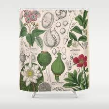 Botanical Shower Curtains 45 Best Dodo Mojo Vintage Images On Shower Curtains Images On