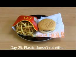 the 31 day mcdonalds burger experiment youtube
