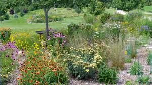 the wildlife value of a messy garden habitat network