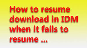 How To Resume How To Resume Idm Error File Youtube