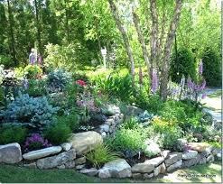 Diy Rock Garden A Rock Garden Ideas Diy Rock Garden Ideas Nightcore Club