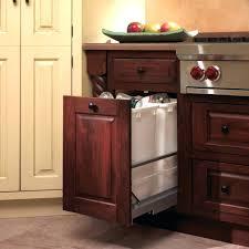 kitchen trash can storage cabinet trash can cabinet plans width tilt out diy gammaphibetaocu com