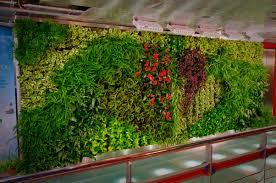 Interior Plant Wall Nbc U2013 Glt Universal Is Green U2013 Nyc Rockefeller Center Green