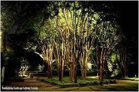 75 brilliant backyard u0026 landscape lighting ideas 2018
