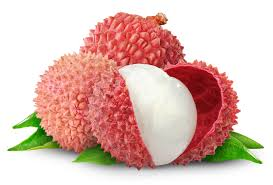lychee fruit candy lychee white background images all white background