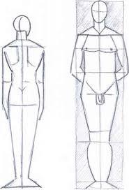 body height drawing the human body joshua nava arts