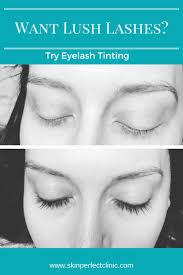 7 best eyelash and eyebrow tinting images on pinterest eyebrow