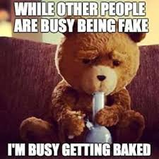 Weed Meme - stoner ted busy getting baked weed memes