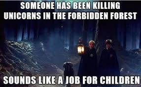 Hary Potter Memes - the 50 best harry potter memes