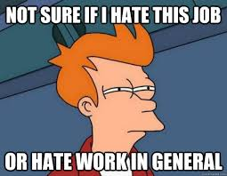 Hate Work Meme - not sure if i hate this job or hate work in general not sure if