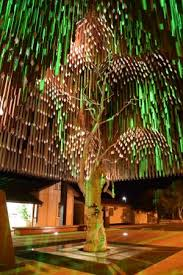 tree of knowledge at 4am picture of tree of knowledge memorial