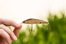 how to downsize your home 5 ways to downsize your presentation for cold water bass