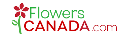 canada flowers send flowers online in canada flowers canada