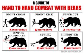 Survival Memes - bear survival tips album on imgur