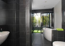 great bathroom designs bathroom design ideas remarkable furniture funky dining room table