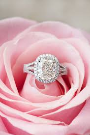 wedding rings flower images Engagement rings and flowers 15 perfect shots jpg