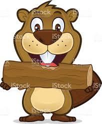 beaver eating wood stock vector art 662895550 istock