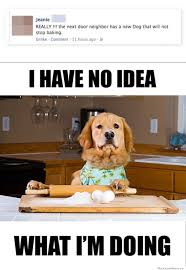 Baking Meme - the neighbor s dog will not stop baking weknowmemes