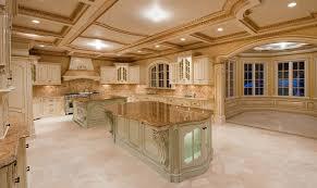 luxury kitchen cabinets good distinctive luxury kitchen concept ideas photograph current