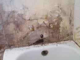 best way to get rid of mold in bathroom u2013 justbeingmyself me
