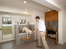 Home Interior Ideas 5 Dog Friendly Home Ideas Utilities And Images