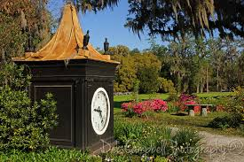 South Carolina travel clock images Magnolia plantation and gardens deb campbell photography jpg