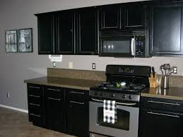 Painting Kitchen Cabinets Black Painted Kitchen Cabinets Ideas