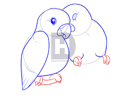 how to draw lovebirds step by step drawing guide by darkonator
