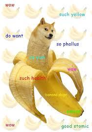 Funniest Doge Meme - windoge xp google search mtg pinterest doge memes and