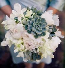 echeveria light pink peony white dendrobium orchid and dusty
