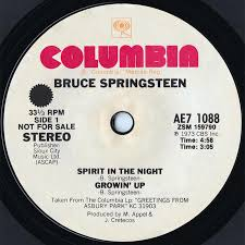 What Are The Lyrics To Blinded By The Light Bruce Springsteen Lyrics Spirit In The Night Album Version