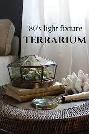 repurpose a light fixture into a succulent terrarium terraria