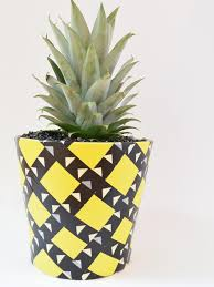 how to grow a pineapple and make a pineapple planter how tos diy
