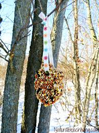 how to make the best birdseed ornaments natural beach living
