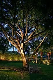 Led Landscape Tree Lights Chic Inspiration Landscape Tree Lighting Trees Gardening Design